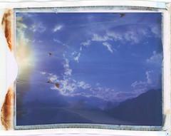 669 Skies (sycamoretrees) Tags: 669 669200408 analog automatic100 backwardspeeled clouds expired expired2004 film instantfilm landcamera marianrainerharbach model100 packfilm polaroid sky type100