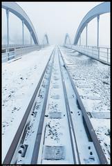 _DSC6658-Edit-2.jpg (jezqio) Tags: uppsala nikon winter naturephotography nature mist frost sweden fog nikkor d810 24120 snow