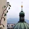 look around the corner (.martinjakab) Tags: provia church plant salzburg austria green square dof depthoffield