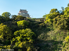 180407 Atami.jpg (Bruce Batten) Tags: shadows locations trips occasions subjects honshu shizuoka trees buildings plants japan vacations atamishi shizuokaken jp