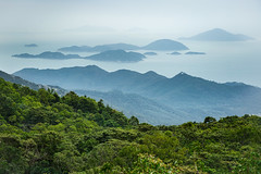 View from Victoria Peak (Daniel Zwierzchowski) Tags: sonyalpha sony alpha hongkong china hk asia landscape outdoor mountains islands sea bay south trees sel24105g a7rmk2 a7rii ngc