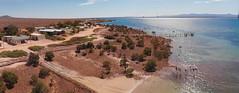 shacks_Panorama_aerial (Georgie Sharp) Tags: aerial panorama port augusta
