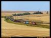 wiry-belmont-wa-8-11-2015b (funnelfan) Tags: train railroad railway shortline locomotive pnw pacificnorthwest washington belmont wheat fields palouse gp30 b408 sd9 hills