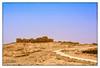 Masada, Israel (msankar4) Tags: israel middleeast asia mediterranean oldworld msankar sankarraman sankarramanphotography portlandphotographer photographer photography oregon herod josephus romanempire firstjewish–romanwar masada haifa baháígardens