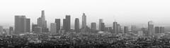 DTLA Skyline (Travis Estell) Tags: california greaterla losangeles losangelescounty panorama skyline unitedstates us