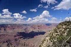 "Grand Canyon, Arizona, August 2017 431 (tango-) Tags: grandcanyon arizona canyon us usa unitedstates america westernamerica west ovest америка соединенныештаты сша 美國""美國""美國 amerika vereinigtestaaten アメリカ 米国米国 соединенные штатысша"