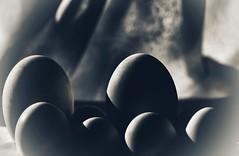 No todas queremos un principe. Algunas nos conformamos con un hombre que no tenga los huevos de adorno. (elena m.d.) Tags: huevos clavebaja ladooscuuro sombras luces nikon d5600