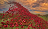 Poppy wave at Fort Nelson 3- (jdl1963) Tags: red poppy poppies enamel wave sculpture portsmouth hampshire fort nelson world war remembrance tribute flower sky high dynamic range hdr nikon d810 portsdown hill solent