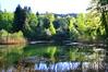 Franzosenweiher in Spreitenbach (barbarasteinemann) Tags: frühling hasenberg etang franzosenweiher weiher lake see schweiz aargau spreitenbach