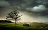Frühlingsgewitter (r.steiling) Tags: blitz blitze cloud gewitter himmel lightnings sky storms thunderstorm wolke light lights de rain regen storm stormchase sturm wolken zelle outdoor olympus omdem1 zuiko 1240mm pro live composite funktion lightning