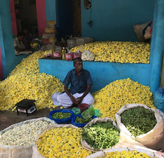 Madurai flower market (Rick Elkins) Tags: man merchant flowers india madurai color market sitting tamilnadu