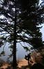 2018-03-28 (Giåm) Tags: namche namchebazar namchebazaar sagarmatha sagharmatanationalpark khumbu khumbuvalley solukhumbu himalaya nepal नेपाल giåm guillaumebavière
