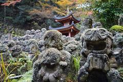 Otagi Nenbutsu-ji, 3 (Aerisabel) Tags: otagi nenbutsuji kioto japan travel japon temple edificio árbol arquitectura gente en la foto autumn arashiyama kyoto roca hierba animal paisaje