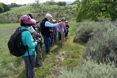 At the charparral/grassland boundary, Carl asked the group what could have caused the bare zone there. (openspacer) Tags: carl education people tourgroup