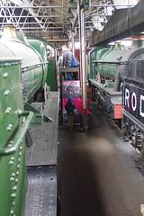 RD16334.  Fireman's View. (Ron Fisher) Tags: steam steamlocomotive steamengine locomotive locomotiveàvapeur dampflok gwr greatwesternrailway didcotrailwaycentre rail railway railroad eisenbahn chemindefer museum railwaymuseum