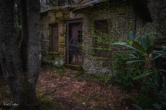 Stay Out!! (Reid Northrup) Tags: landscape nikon northcarolina spring trees rrs reidnorthrup cabin old abandoned creepy haunted