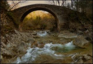 THE BRIDGE .