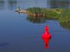 An der Oder (bernstrid) Tags: ffo frankfurto brandenburg boje seezeichen oder fluss wasser ziegenwerder blau buoyant