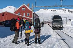 End of journey (hanschristian_nielsen) Tags: norge skiferie hyttetilhytte cabintocabin winter norway snow sky finse train