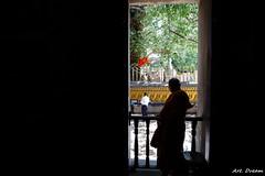 _01A5339-1 (Dream Delivered (Dreamer)) Tags: srilanka