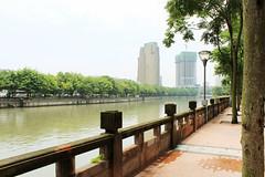Jinjiang River in Chengdu, China (nattoproblem) Tags: china chinese asia asian chengdu sichuan szechuan smog city foggy cloudy cities river rivers tree trees street light canon rebel t5i travel