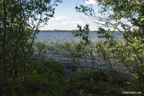 Шацький Національний Природний Парк Озеро Пісочне Берег InterNetri  Ukraine 167
