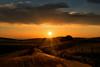 Morning has broken (marionrosengarten) Tags: sunrise sun beams rays clouds countryside odenwald landscape meadows grass green wiesen felder landschaft nikon sonne strahlen sonnenstern gegenlicht backlight shine nikon24120f40 sky blue blendenstern nature light sonnenaufgang morgen morning early