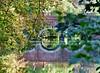 (108) Allemaal Brugge Smedenpoort (Johnny Cooman) Tags: brugge vlaanderen belgië bel landschap belgium ブルージュ brügge brujas brugia bruges ベルギー westflanders landscape flemishregion flandre flandes flanders flandern bélgica belgique belgien belgia westvlaanderen panasonicdmcfz200 aaa architectuur architecture flhregion reflectie reflection brug bridge pont brücke puente tree boom baum arbre doorkijk