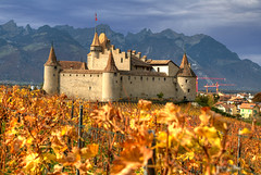 Les Feuilles Mortes (hapulcu) Tags: aigle ch schweiz suisse suiza svizzera switzerland vaud waadt automne autumn autunno castle chateau herbst høst schloss toamna