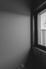 Vivienda unifamiliar en Villanueva de Duero (ruheca | Fotografia de Arquitectura y mucho +) Tags: 2018 arquitecturaespañola castillayleon policarbonato rehabilitacion residencial valladolid villanuevadeduero viviendaunifamiliar architecture architecturephotography arquitectura entrearquitectura españa fotografiadearquitectura grava house javierarias ladrillo luz madera moderna spain susanagarrido wwwentrearquitecturacom