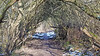 20180402_163713 (wos---art) Tags: bildschichten wald sträucher bäume äste fusweg wildwuchs natur natürlich gewachsen