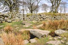 Strange enclosure on Dartmoor (Baz Richardson (back on 26 May)) Tags: devon dartmoor fourwinds stoneenclosures leats streams stonebridges