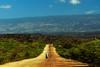Born to be wild (edhi) Tags: dominicanrepublic republicadominicana pedernales sierradebahoruco landscape paisaje sony sonyalpha sonya6300 a6300 biker motorbike road