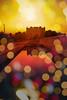castello della zisa (ilsiciliano_) Tags: sunset palermo landscapes canon photoshop colours filter zisa architecture