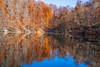 Yedigöller Yansıma (esatphotographer) Tags: yedigöller yansıma manzara orman ağaç tree scenery woods sea nehir deniz turkey türkiye bolu