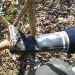 138 - AIGLE Wellworn Wellies filled with mud ( Rubberboots Gummistiefel Laarzen thumbnail