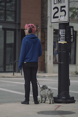 Walking The Dog (Jovan Jimenez) Tags: sony a6500 nikon series e 100mm seriese eseries f28 ilce 6500 people dog boy girl pink hair street chicago alpha kodak elite chrome 200 lut