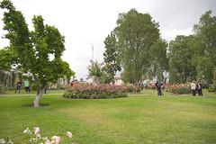 D75_3503 (joezhou2003) Tags: huntington rose garden architecture nikon d750 24120mm vr