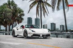 ANRKY Wheels - Ferrari F488 - AN22 (anrkywheels) Tags: milledfresh anrkywheels anrky an22 ferrari ferrari488 spyder rarri ferrarifriday pirelli akrapovic novitec vossen fitment lifestyle exotic stance miami luxury blod vlog sky city adv1