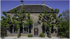 Waalbandijk 24, Varik (Luc V. de Zeeuw) Tags: 24 espalier house varik waalbandijk24 gelderland netherlands