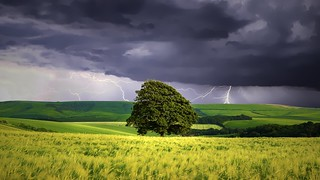 Storm on the Downs