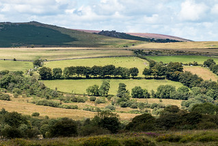 Dartmoor National Park, Devon.