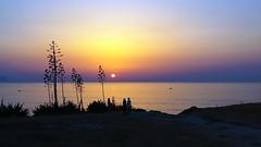 IMG_20170809 - incantati (molovate) Tags: tramonto mare barca ombra tafme sole terrasini spellbound xiaomi redmi note3 incantato crepuscolo erba albero cielo bagnasciuga battigia spiaggia orizzonte paesaggio panorama favarotta sunset