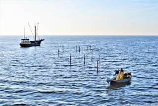 Fishermen . . .