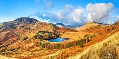 Langdale Valley (Allan Stodd) Tags: langdalepikes bleatarn tarn cumbria lakedistrict valley