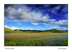 Castelluccio di Norcia (guitarmargy) Tags: panorama landscape picture umbria paesaggio natura sky nuvole cielo marcellobardi fiori prati
