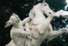 higher yearning (isadora.jpg) Tags: 35mm kodak portra 400 film praktica tl5b asahi takumar 14 statue horseman grime tears struggle winter vienna