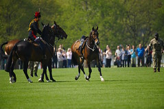 The Queen's 2018 Birthday gun salute - 34 (D.Ski) Tags: 2018 queens queen birthday gun salute royal park horse horses april westminster london nikon 2470mm 200500mm thekingstrooprha thekingstroop parade thequeen hydepark d700 nikond700