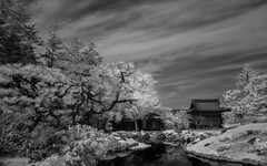Isuien Garden, Nara, Japan Infrared image (Matt OZW) Tags:
