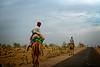 Camels in Thar desert, Rajasthan, India (CamelKW) Tags: 2018 india rajasthan camels thardesert dhoba in